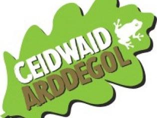 ceidwaid-arddegau-5e66bd55cf826.jpg