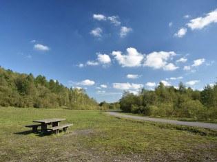 pcp-picnic-5bad51b44dc88.jpg